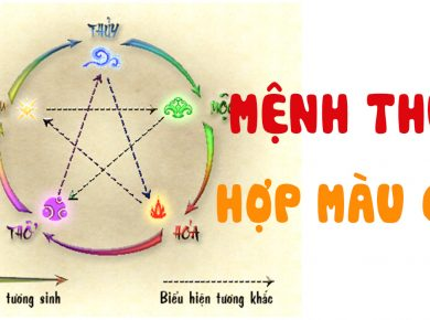 lenh-thuy-hop-mau-gi