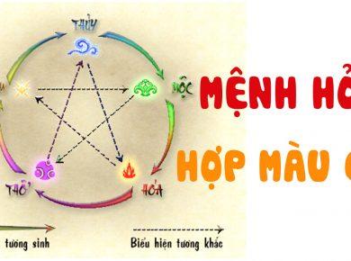 menh-hoa-hop-mau-gi