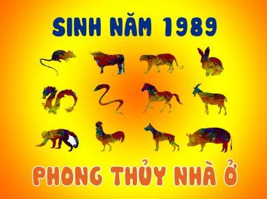 phong-thuy-nha-o-sinh-nam-1989